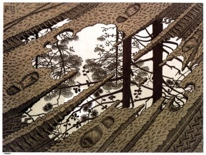 escher puddle